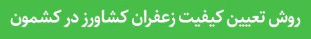 تعیین کیفیت زعفران کشاورز در کشمون