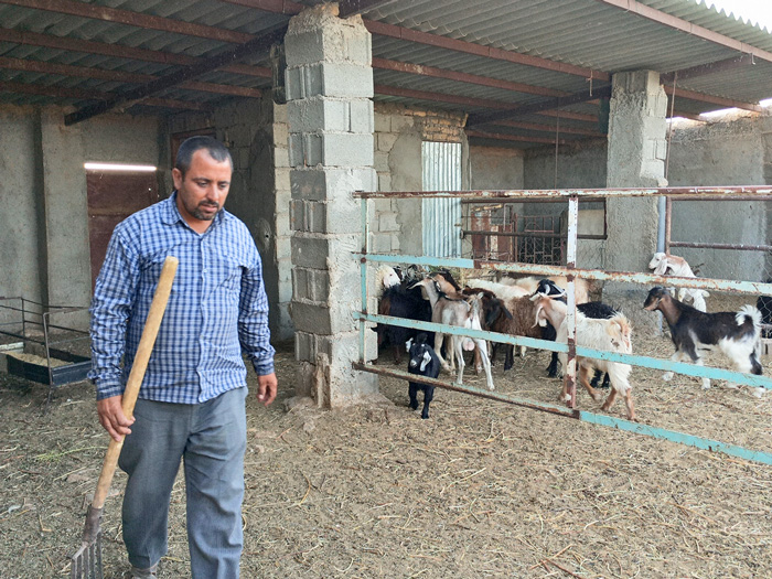 کشاورز محمود غلم حسن