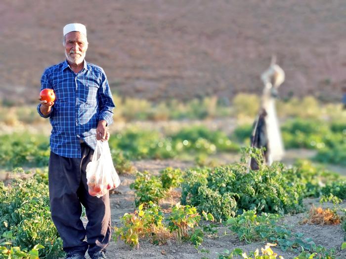 کشاورز کشمون