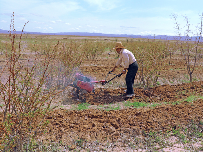 کشاورز زشک