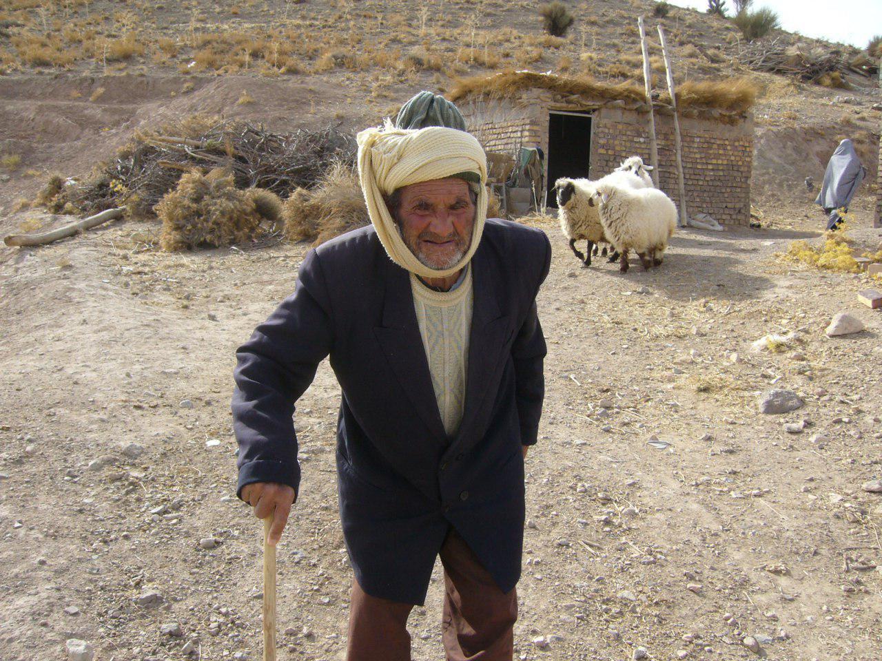 رمضان محسن زاده در کنار گوسفندانش
